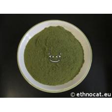Green Bentuangie